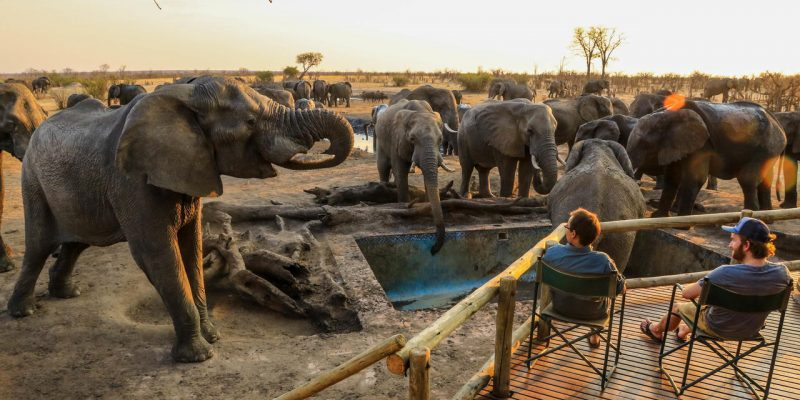 Safaris & African Beach Escapes